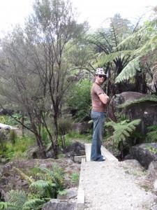 Path at Te Puna Quarry Park
