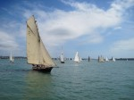 Sailboats at Annual Regatta for Auckland Anniversary Day