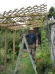 Grape Arbor Construction, Step 3, Placing Latticework