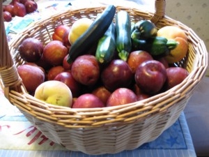plums, zucchinis, and peaches harvested from home garden in New Zealand
