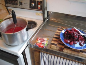 Stewing plums to make plum jam/jelly in New Zealand